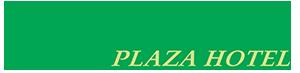 Alzira Plaza Hotel
